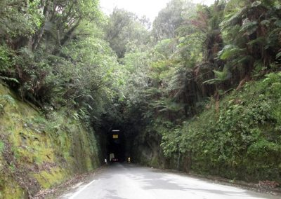 Waikato-2019-Into-the-belly-of-the-beast-v2